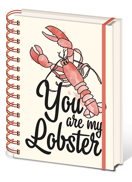 Blok Friends (Přátelé) - You are my Lobster