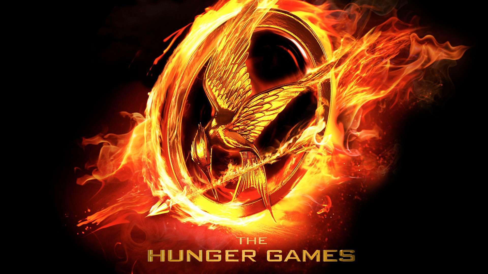 Výsledek obrázku pro Hunger games