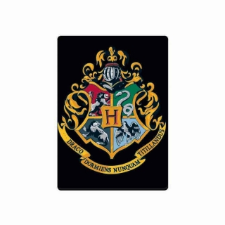 Magnet Harry Potter - Bradavice (Hogwarts) 2