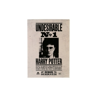 Magnet Harry Potter - Undesirable